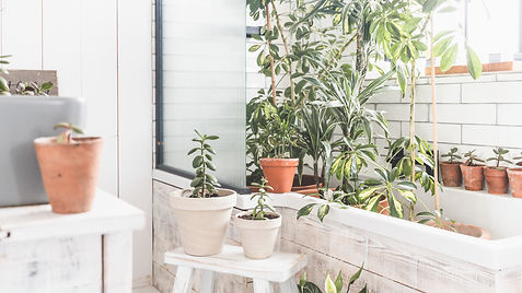 SHOWERING OUR HOUSEPLANTS | How we clean & take care of our houseplants in our tiny home
