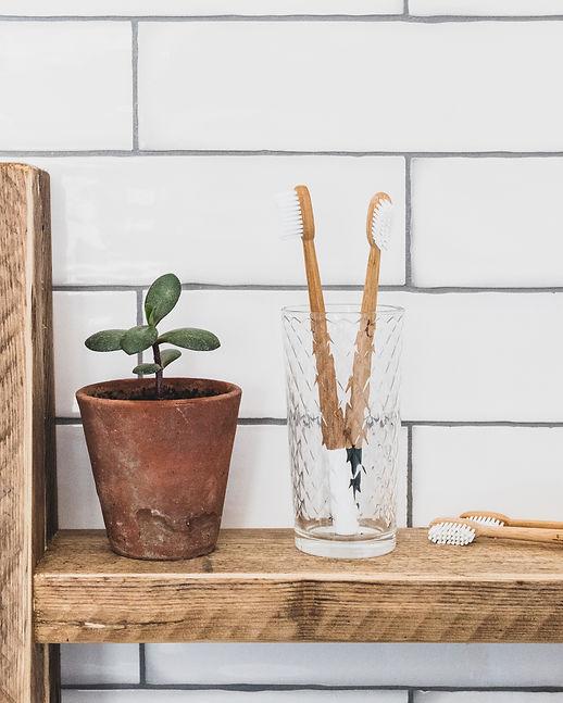 Truthbrush | Easy Eco Swap