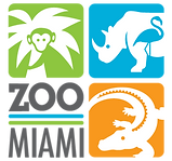 1 ZOOMIAMI FULL LOGO (002).png