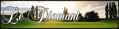 Diamant Banner.jpg