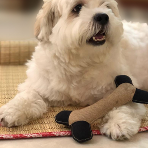 Pet Plush Toy