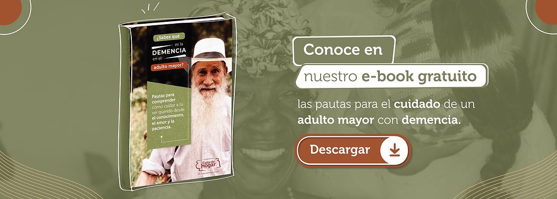 2_PIEZA_SLIDER_WEB_PAUTA_PAGA (1).png