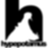 hype-logo- web.png