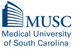 MUSC_TAG_SOLID_00447c.png