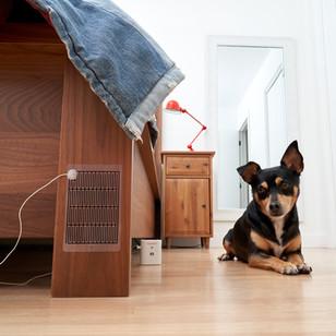 Pet Urine - Dog Pee Alarm | SprayAlert