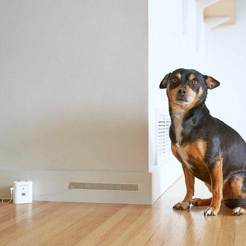 Spray Alert Pet Urine Alarm 17 use me 2.