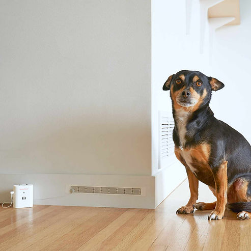 SprayAlert Pet Urine Alarm and Long Sensor