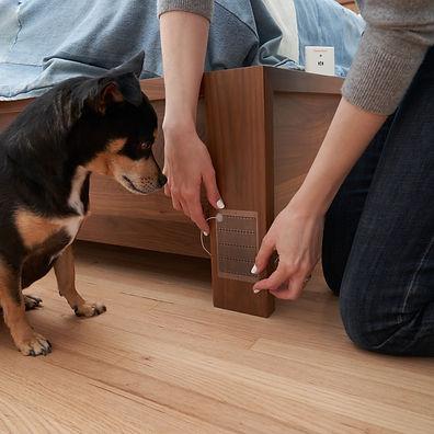 Spray Alert Pet Urine Alarm 21.jpg