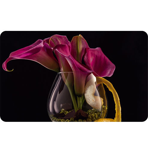Opulent real touch Calla Lily stems