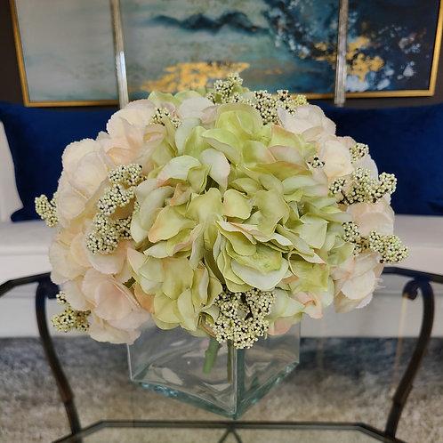 Soft and fluffy Hydrangeas