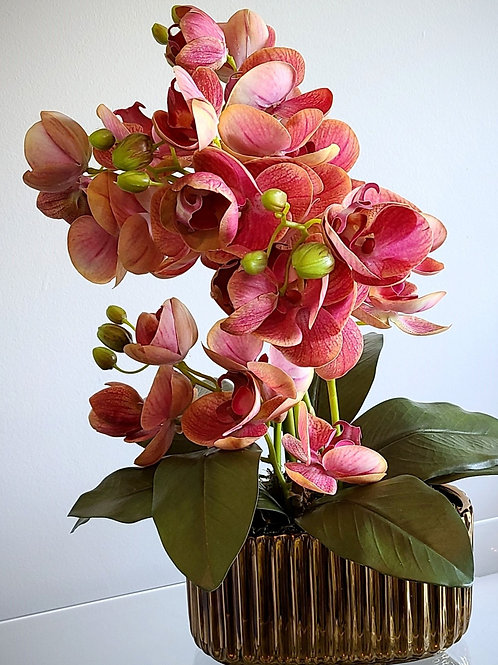 Real Touch Phalaenopsis Orchids