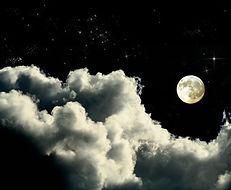 Moonlit Night _edited.jpg
