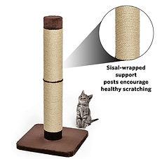 ragamuffin kittens sisal post