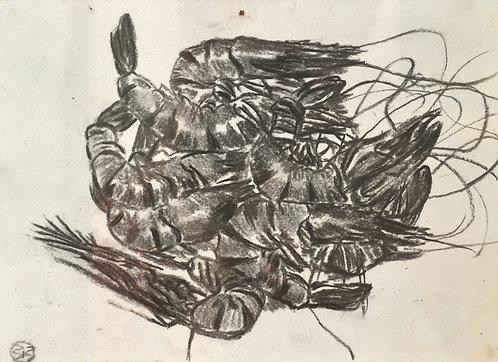 lake prawns 2012 -