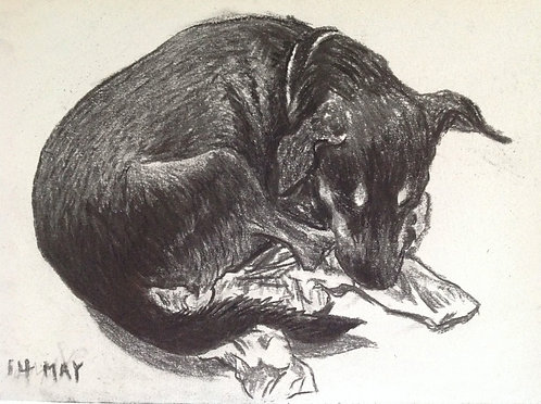 pups 2015 -charcoal on paper 20x 30cm-    SOLD