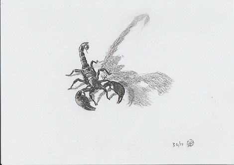 scorpion study 2015