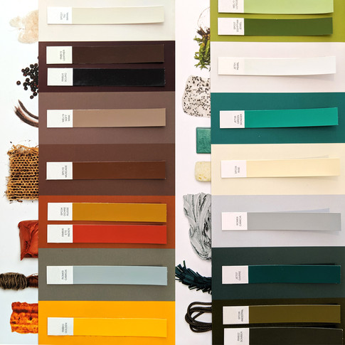 COLOR TRENDS RESEARCH
