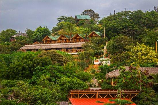 fachada-del-nativa-bambu