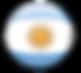 bandera argentina logo.png