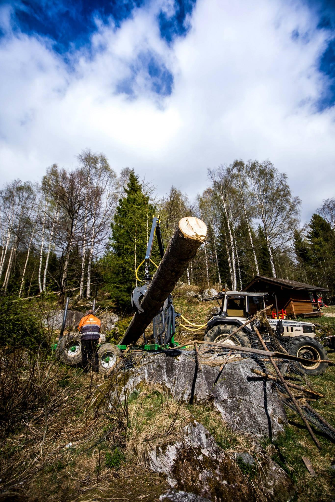 Tømmerhenger i aksjon (Vegardfoto)