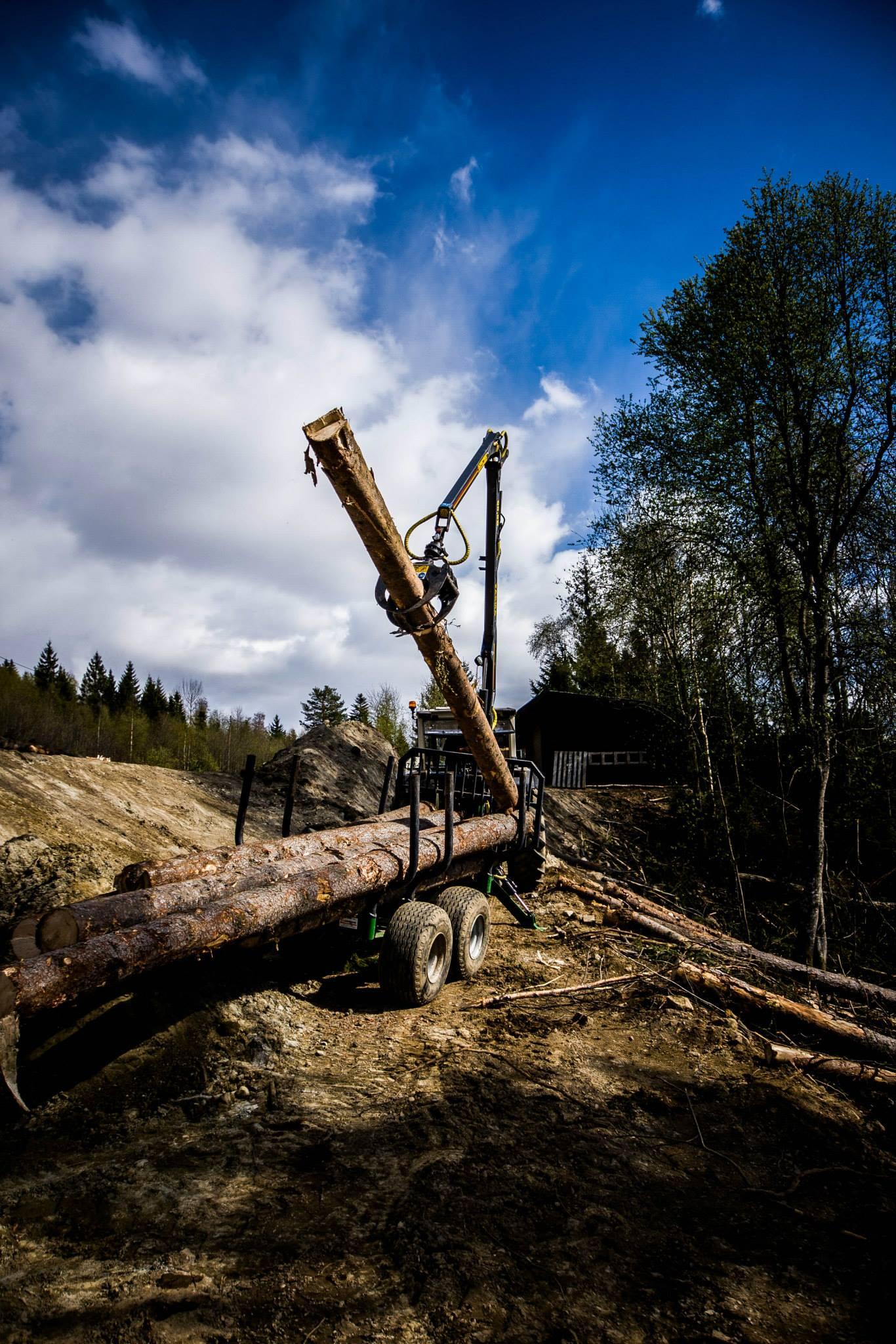 Tømmerhenger (Vegardfoto)