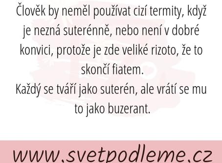 Krátké pojednání o jazyce českém