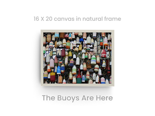 The Buoys Are Here  2570