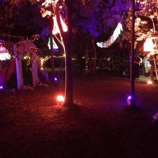 Festival Themed Wedding Lighting Design