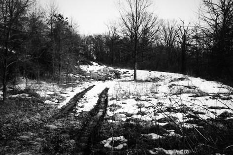 Sporenonderzoek in de omgeving van de plaats van het misdrijf.