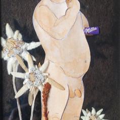 Het Zwitserleven - 2020  Knipsel met droogbloemen op een donzig bruine achtergrond van vilt. 9,3 x 18,3 cm