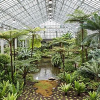 Garfield Park Conservatory Alliance.jpg