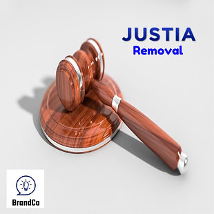 Justia-removal-brandco-expert.jpg