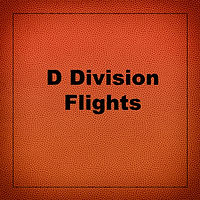 d division.jpg