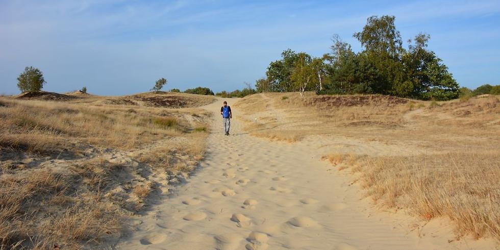 Welkom Lente Powerwalking trail editie!