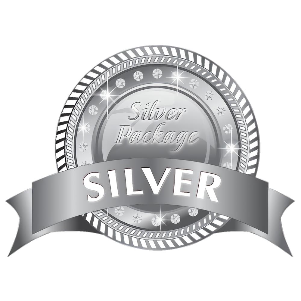 Silver Branding Package
