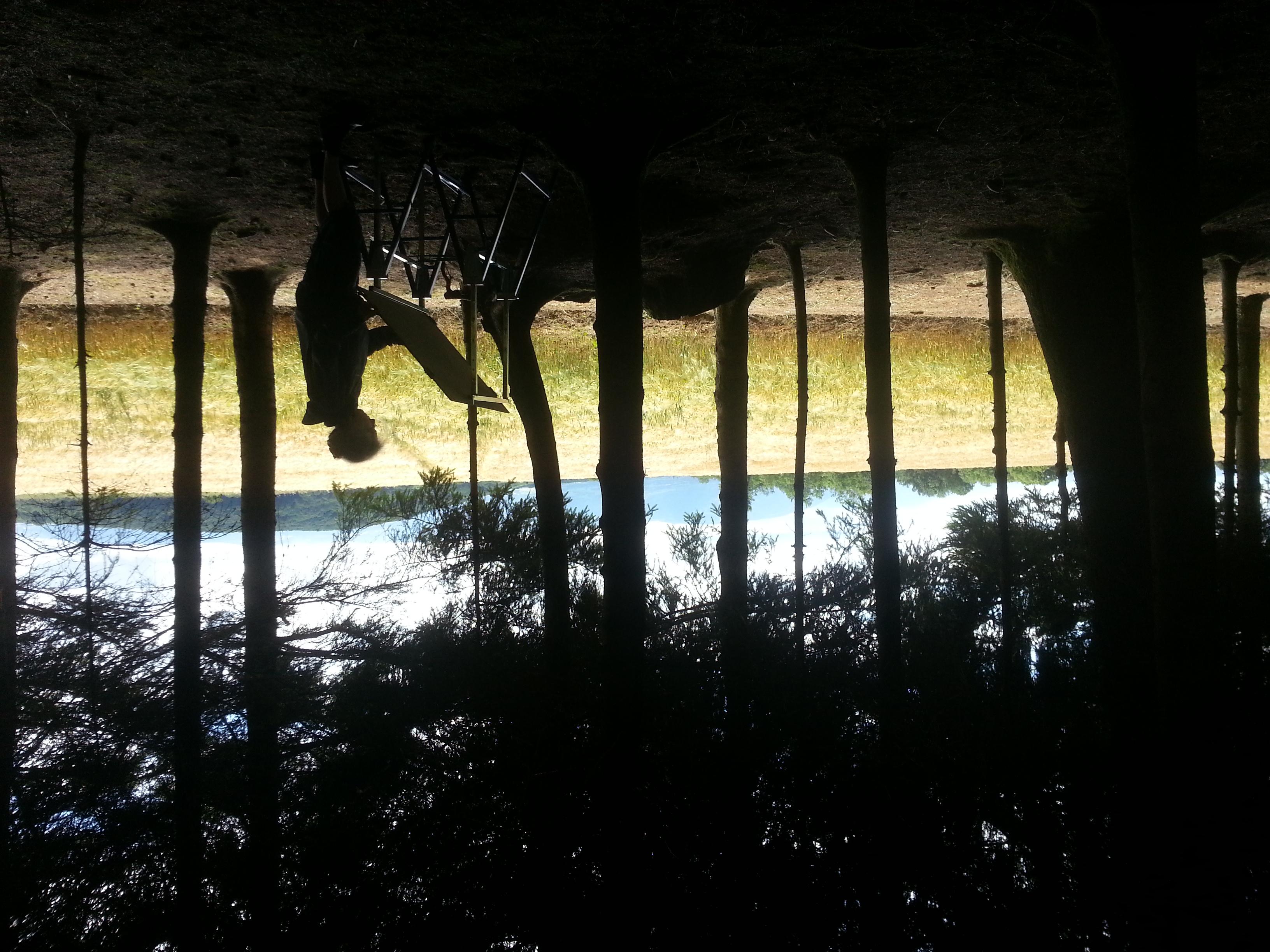 VHD_travail_en_forêt_2