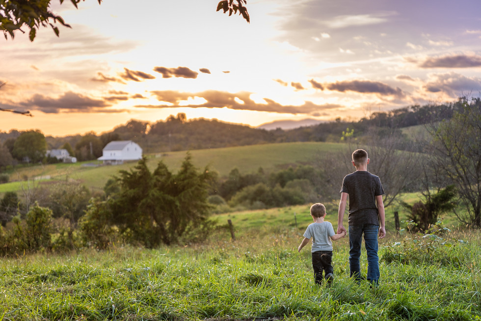 Golden Light with the Ingrams