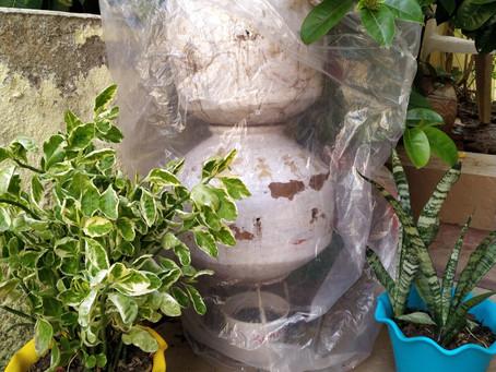 Raincoat composting : 2 hacks for happier composting!