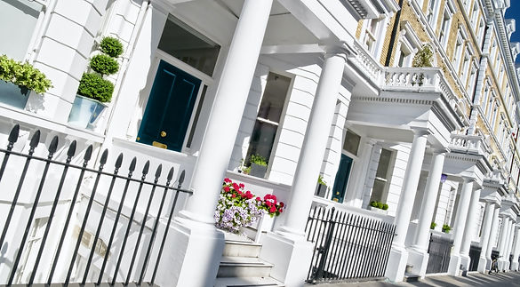 Residential Pest Control London By Marve