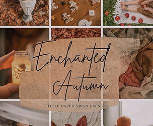 Enchanted Autumn Mobile Preset