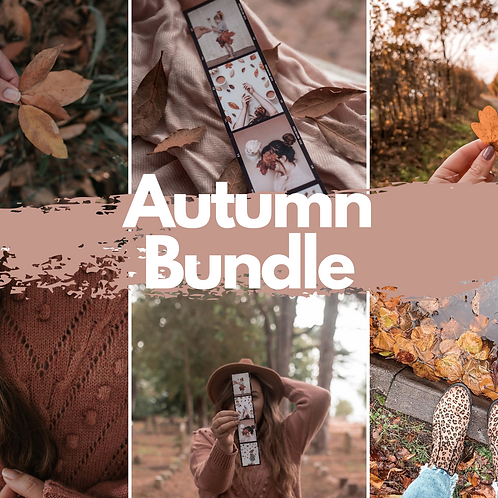 Early Autumn Bundle