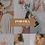 Thumbnail: Portra Mobile Preset