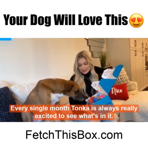 Fetch This Box