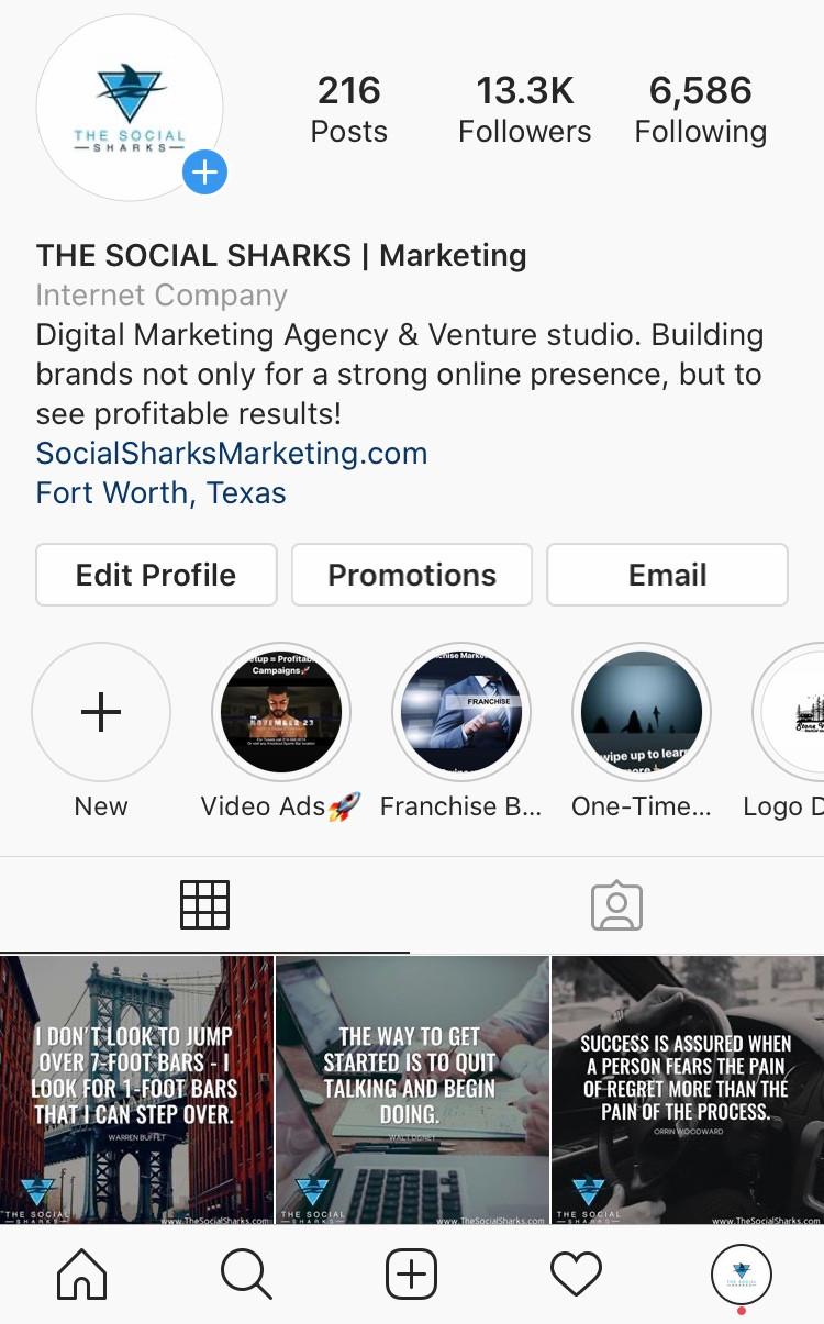 The Social Sharks on Instagram