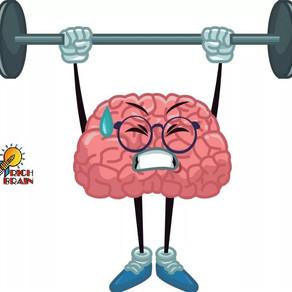 Что такое Brain Fitness?
