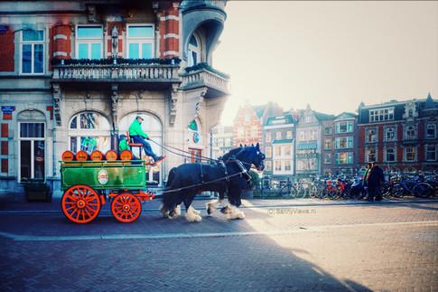 Freddy's, Amsterdam