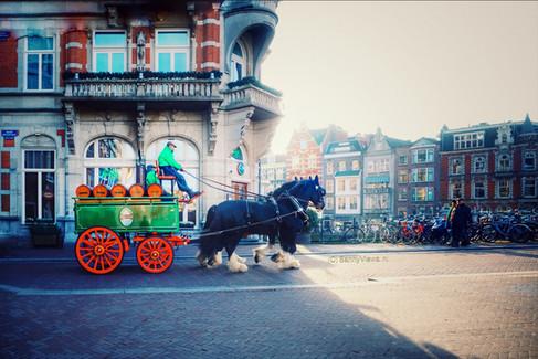 Freddy's, Amsterdam.JPG