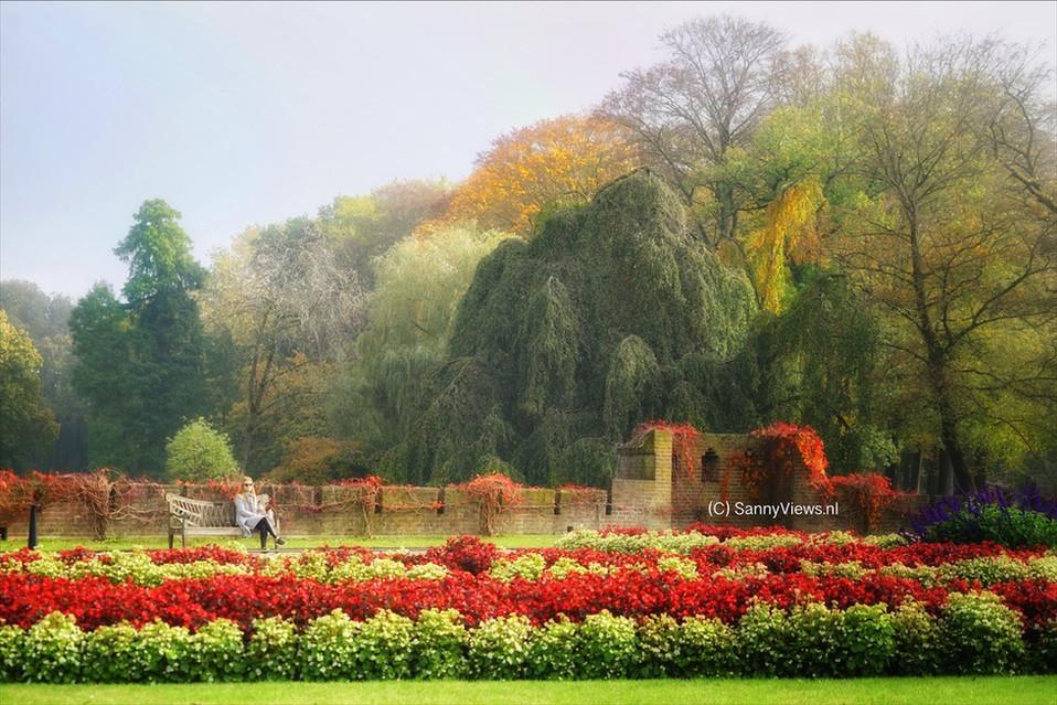 Autumn in Holland.JPG