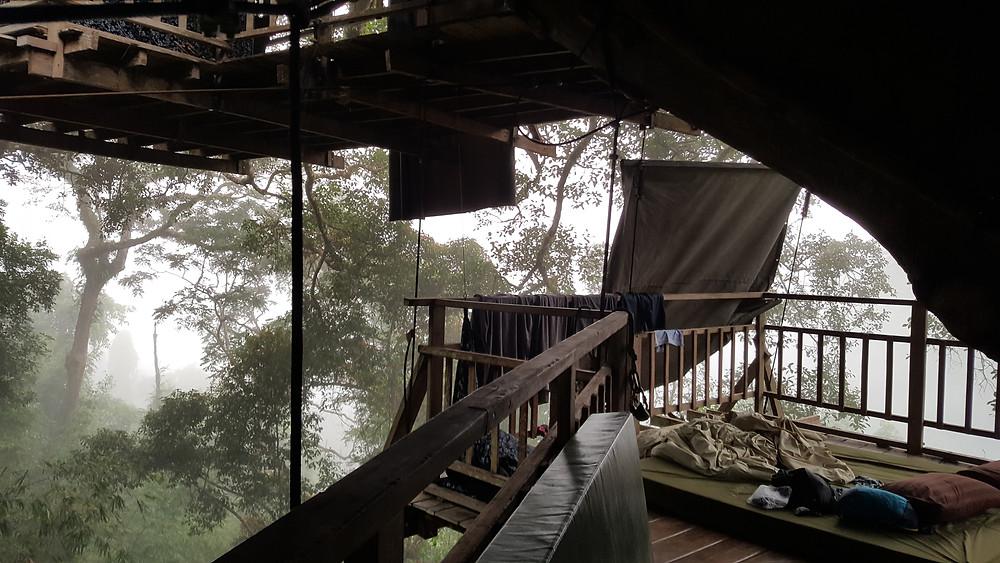 treehouse laos