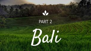 Bali Part 2